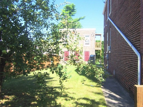 4_Fence_and_Courtyard_New.jpg